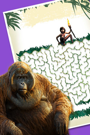 Mowgli's Jungle Maze