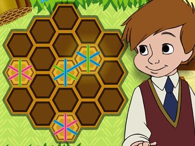 Honig Puzzle