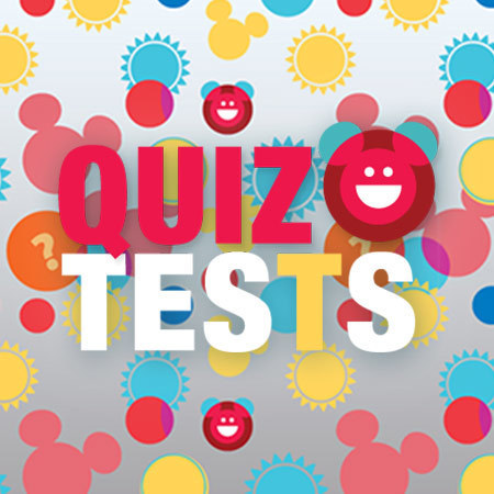 Quiz & Tests