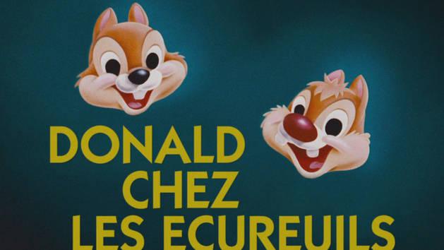 Mickey trop drôle - Donald chez les écureuils