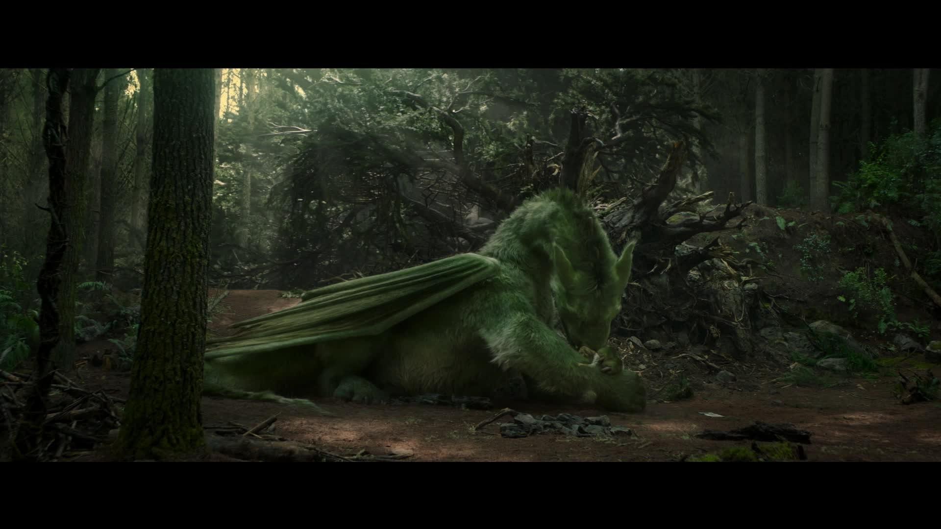 Peter & Elliott le dragon - Nouvelle bande-annonce