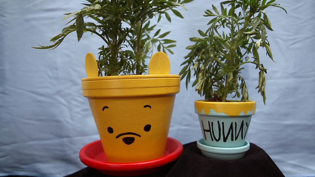 Winnie Puuh-Honigtöpfe l Disney Inspired