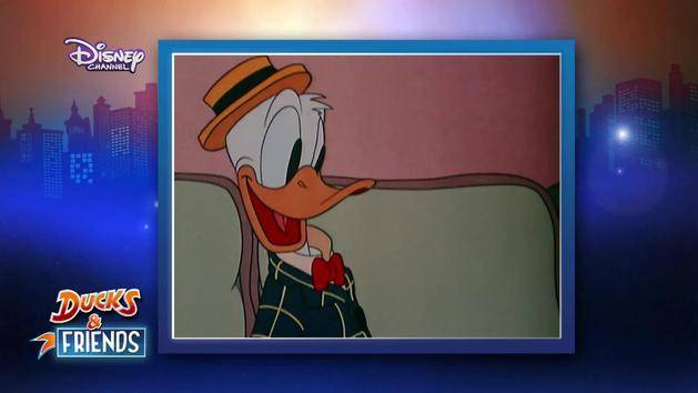 Ducks & Friends - Steckbrief - Donald Duck