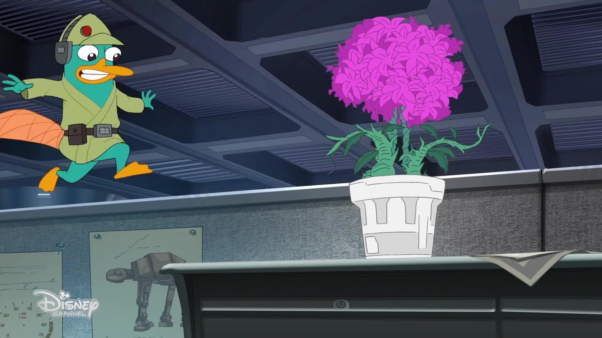 Phinéas & Ferb - Mission Star Wars (1ère partie) - Premières minutes