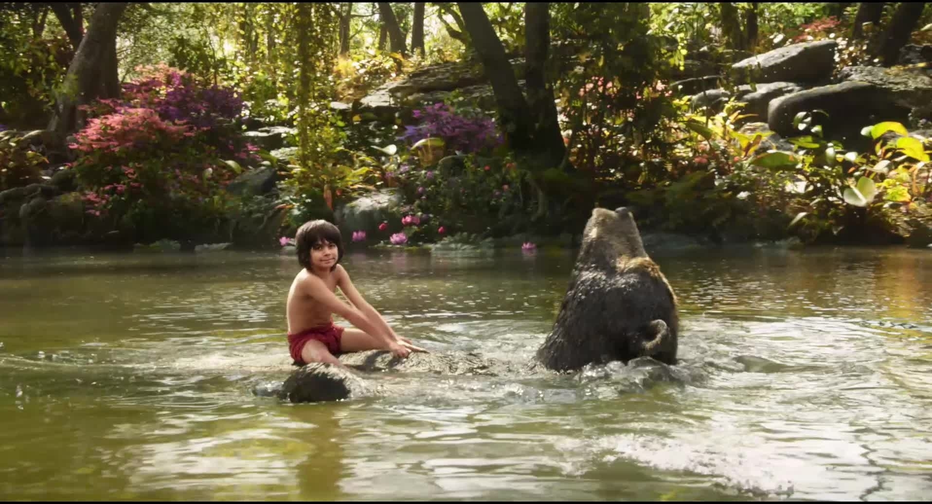 Bare Necessities Music Video