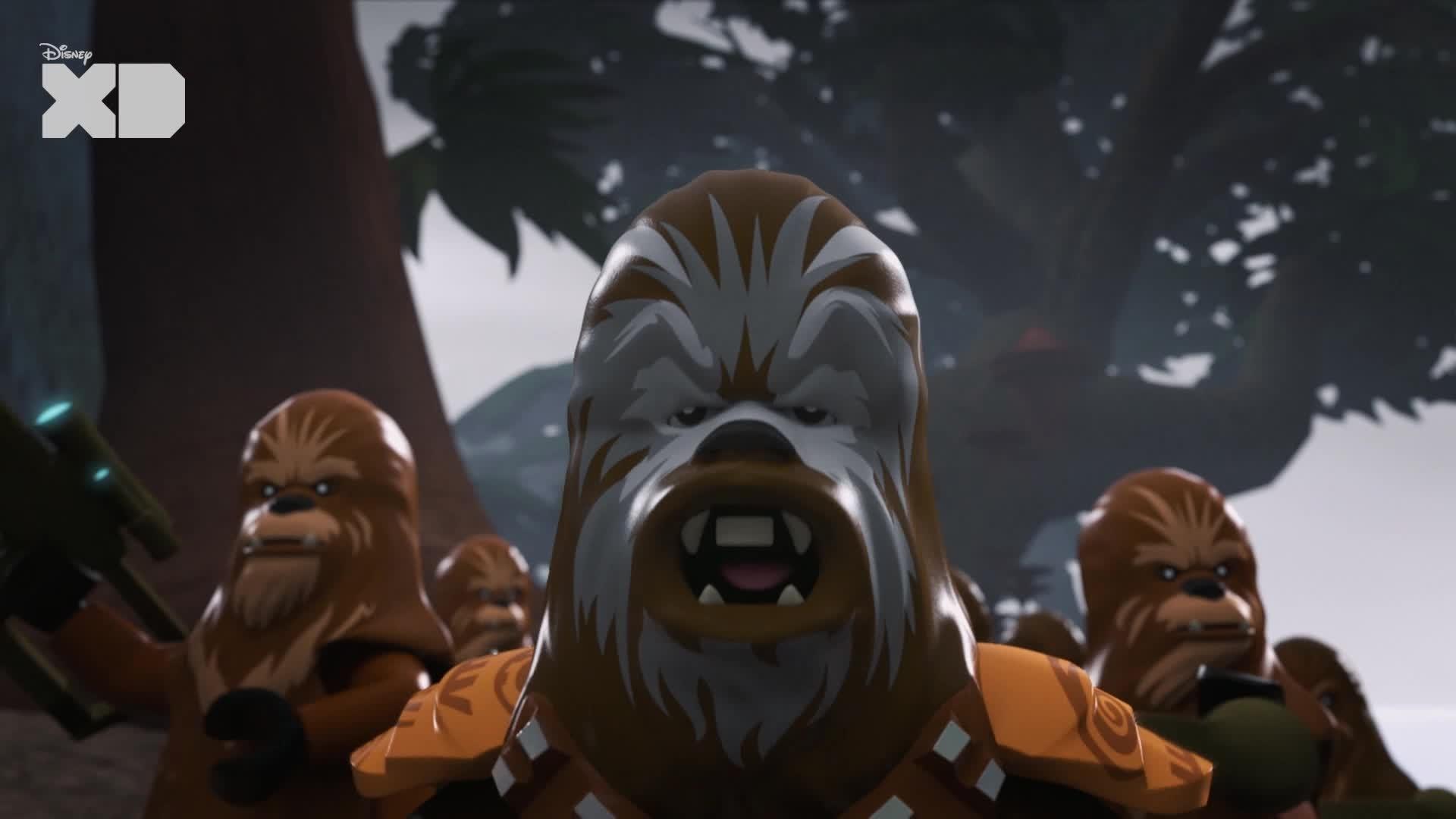 R0-GR vs. Wookiees