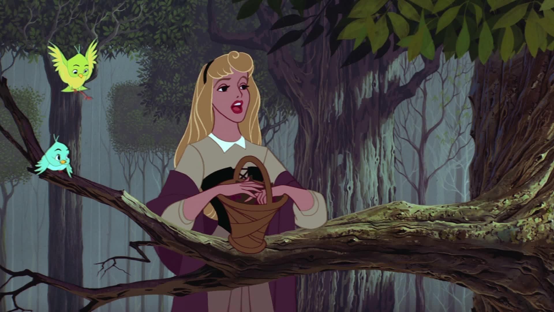 La Belle au Bois Dormant - Chanson : Je voudrais (par Aurore et Philippe)