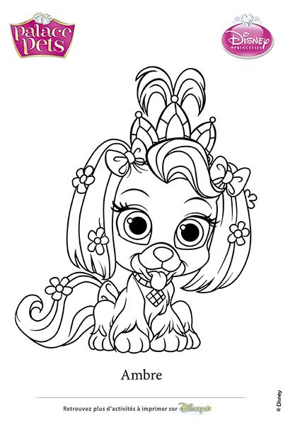 Coloriages palace pets - Coloriage princesse ambre ...