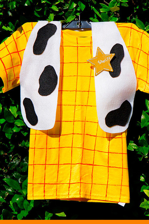 Inspired Card - Woody Dress-up Costume